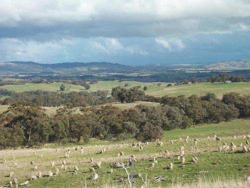 Heathcote Views