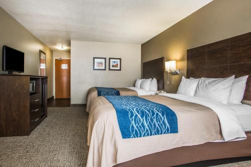 Comfort Inn & Suites Waterloo – Cedar Falls Photo