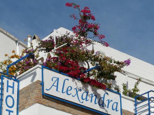Hotel Alexandra photo 21