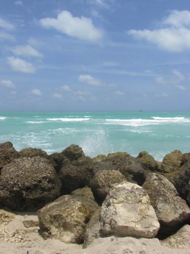Ocean Bliss Photo