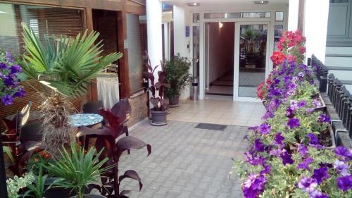 https://q-xx.bstatic.com/images/hotel/max500/780/78096694.jpg