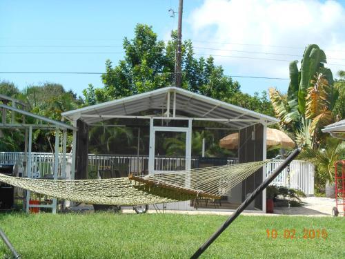 Tropical Fruit Garden Photo
