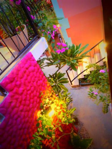 Conchal Hotel Photo