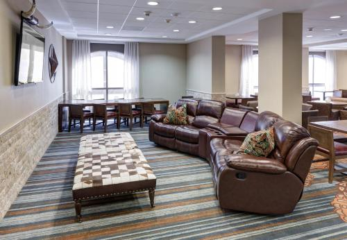 SpringHill Suites by Marriott Dallas Downtown / West End photo 3