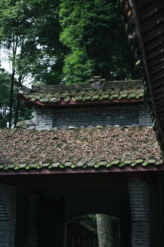 Qingchengshan Yuanming Palace