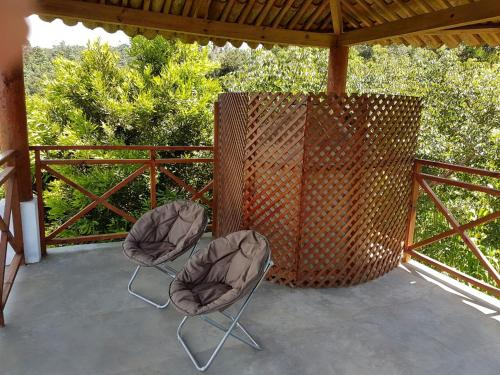 Bosque Macadamia