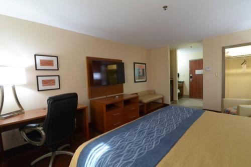 Comfort Inn & Suites Clovis Photo