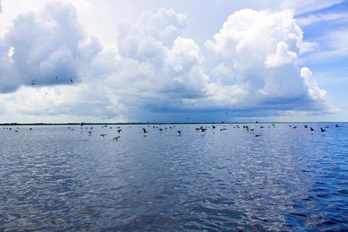 San Felipe Inn Yucatan photo 60