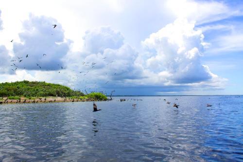 San Felipe Inn Yucatan photo 62