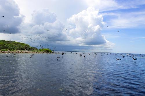 San Felipe Inn Yucatan photo 63