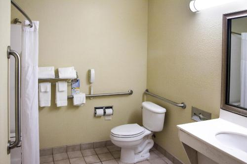 Quality Inn & Suites- Niles Photo