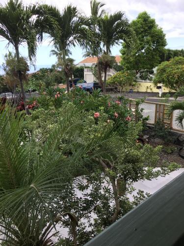 James Green Corner Hale - Kailua Kona, HI 96740