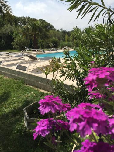 Apparth tel et chambres essentiel spa saliers par arles for Arles appart hotel