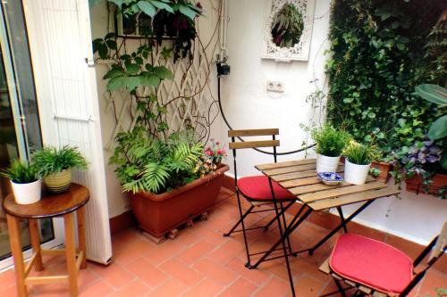 Casa Tortilla Gracia photo 10