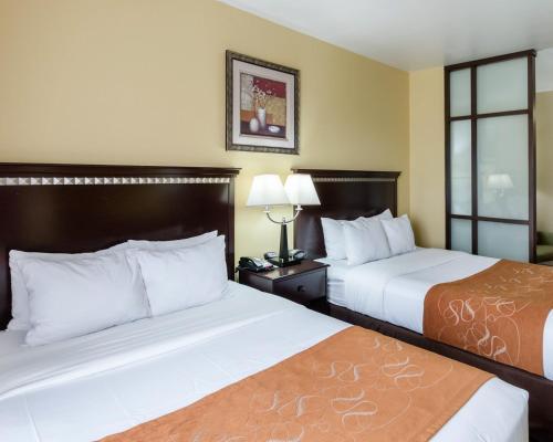 Comfort Suites Palestine Photo