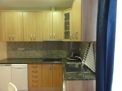 Apartamentos Barcelona - Iberia photo 21