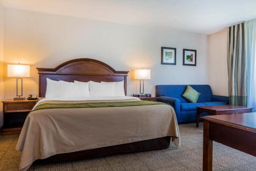 Comfort Inn & Suites South Burlington Photo