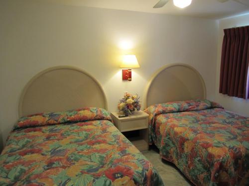 Apollo Motel Photo