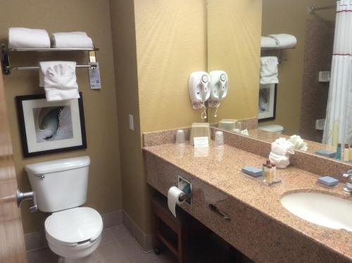 Hawthorn Suites Ltd - Corpus Christi - Corpus Christi, TX 78416