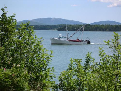 Narrows Too Camping Resort Cabin 8 - Trenton, ME 04605