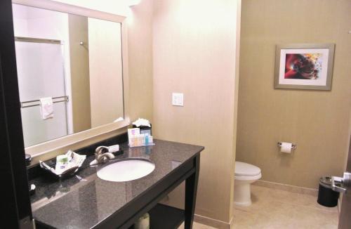 Hampton Inn Carrizo Springs - Carrizo Springs, TX 78834