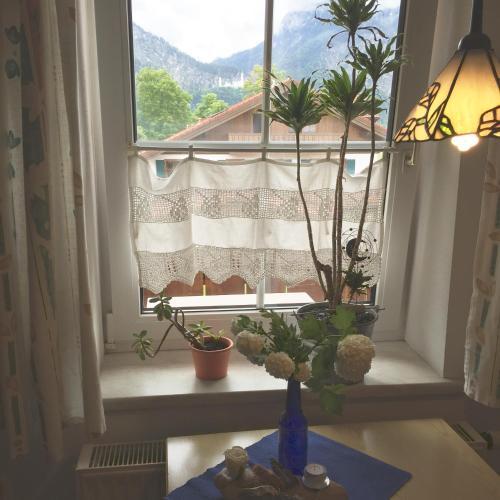 Schwangauer Ferienhaus photo 15