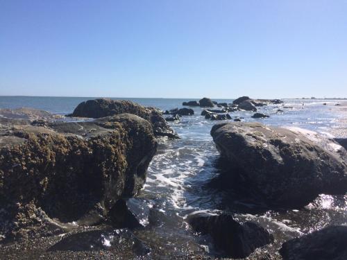 Canterbury Inn - Ocean Shores, WA 98569