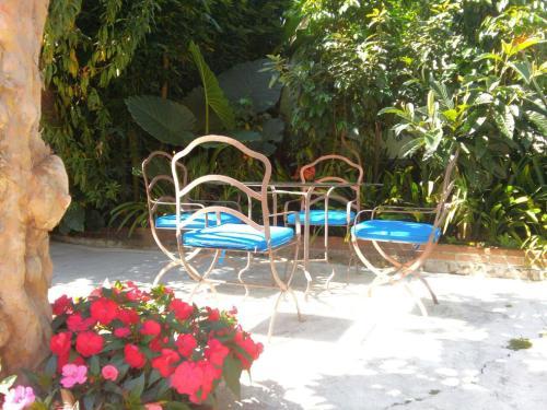 La Casona Breakfast & Wellness Center Photo