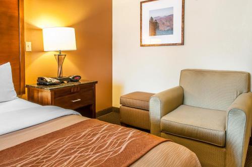 Comfort Inn Midtown Photo
