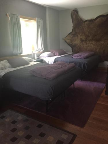 Bear Paw Retreat - Soldotna, AK 99669