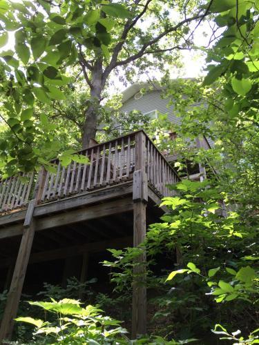 Beaver Lake Haven Retreat - Eureka Springs, AR 72631
