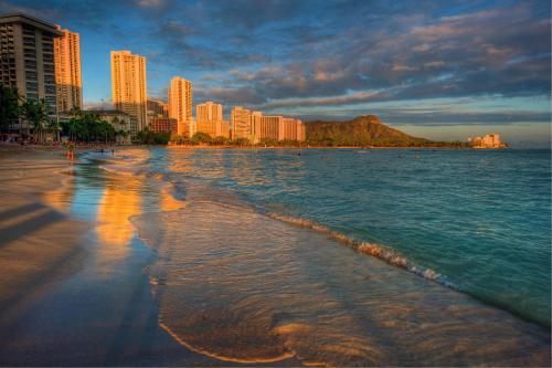 Waikiki Banyan Tower 1 Suite 3506 Photo