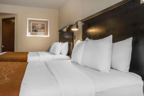Comfort Inn & Suites LaGuardia Airport Photo