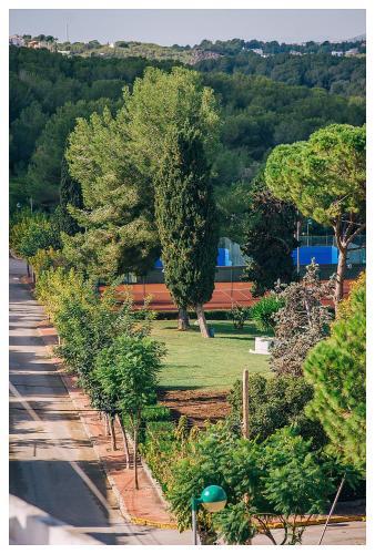 Casa Bonita Sitges photo 18