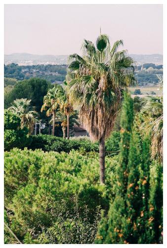 Casa Bonita Sitges photo 19