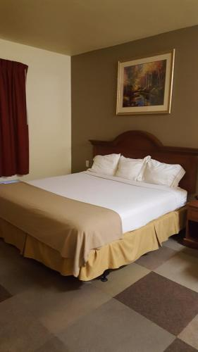 Reddy Hotel Photo