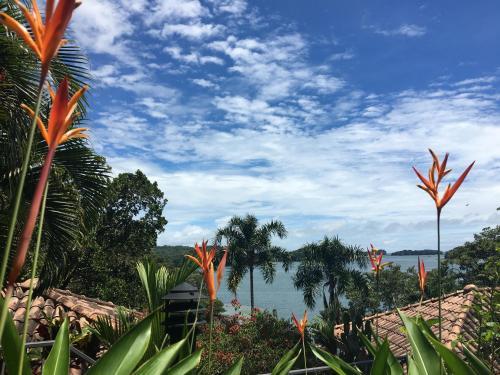 Seagull Cove Resort Photo