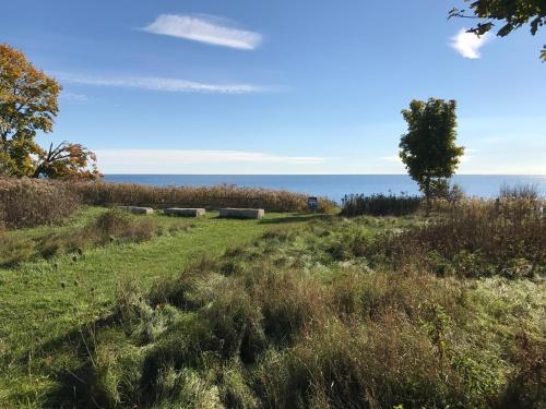 Tz Lake Ontario View - Scarborough, ON M1C 5H7