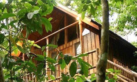 Olympos Bayrams Tree Houses indirim kuponu
