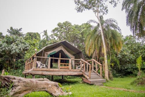 Roots Retreat and Camping Resort Photo