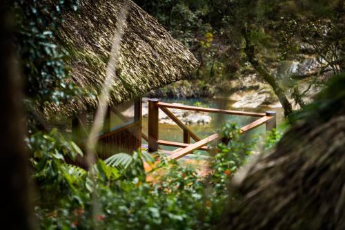 Mountain Pine Ridge Reserve, Cayo District, Belize.