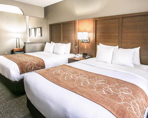 Comfort Suites Willowbrook - Houston, TX 77070