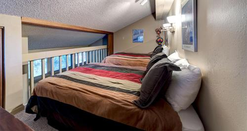 Bear Claw 401 - Steamboat Springs, CO 80487