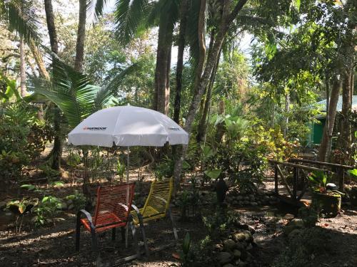 Chosa del Manglar Nature Retreat Photo