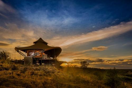 Olare Motorogi Conservancy, Kenya.