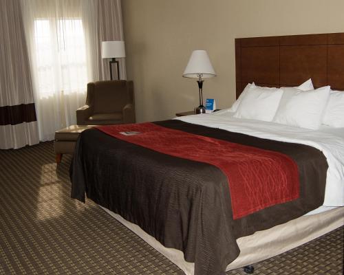 Comfort Inn & Suites Raphine Photo