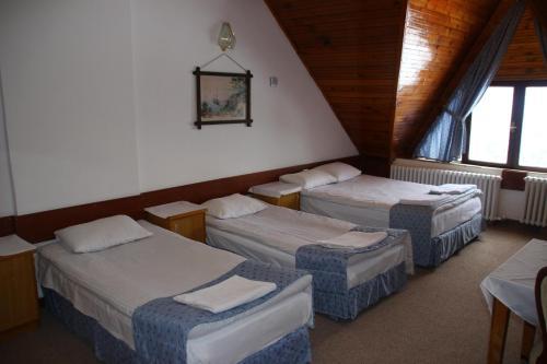 Ilgaz Derbent Hotel, Ilgaz
