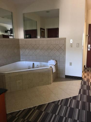 Microtel Inn & Suites by Wyndham Indianapolis Airport photo 17