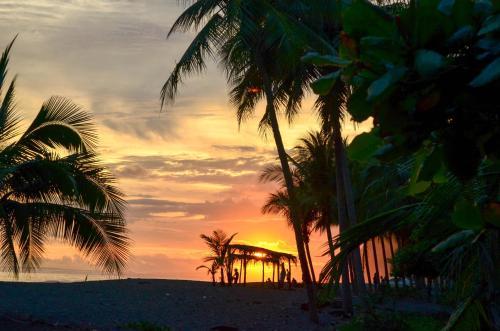 Hotel Lookout Playa Tortuga Ojochal Photo