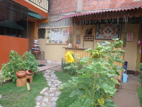 Pachakusi Guest House B&B Photo